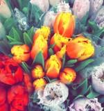 Easter Weekend in Photos